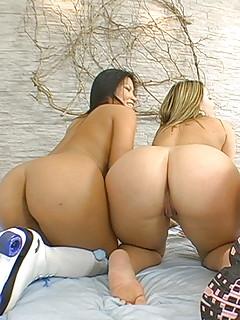 Big Ass Lesbians Pics